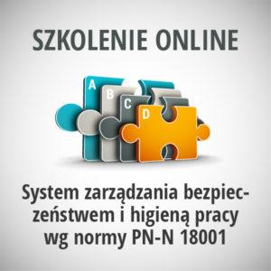 System-zarządzania-bezpieczeństwem-i-higieną-pracy-wg-normy-PN-N-18001